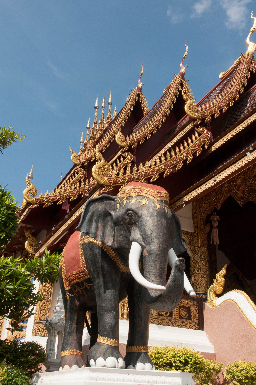 Temple run in Chiang Mai