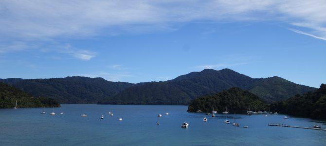 Au-revoir l'île du sud, bonjour Wellington ! – Bye bye South Island, Hello Wellington!